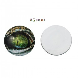 cabochons ronds oeil de dragon 25 mm